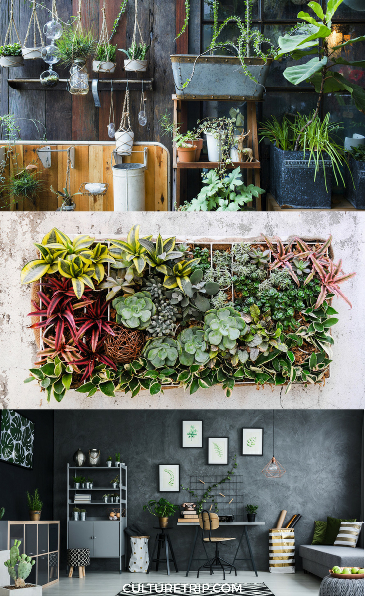 How to Make a DIY Plant Wall Plant wall Plants and Walls