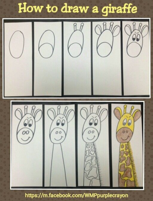 Step By Step How To Draw A Giraffe My 2nd And 3rd Graders Made