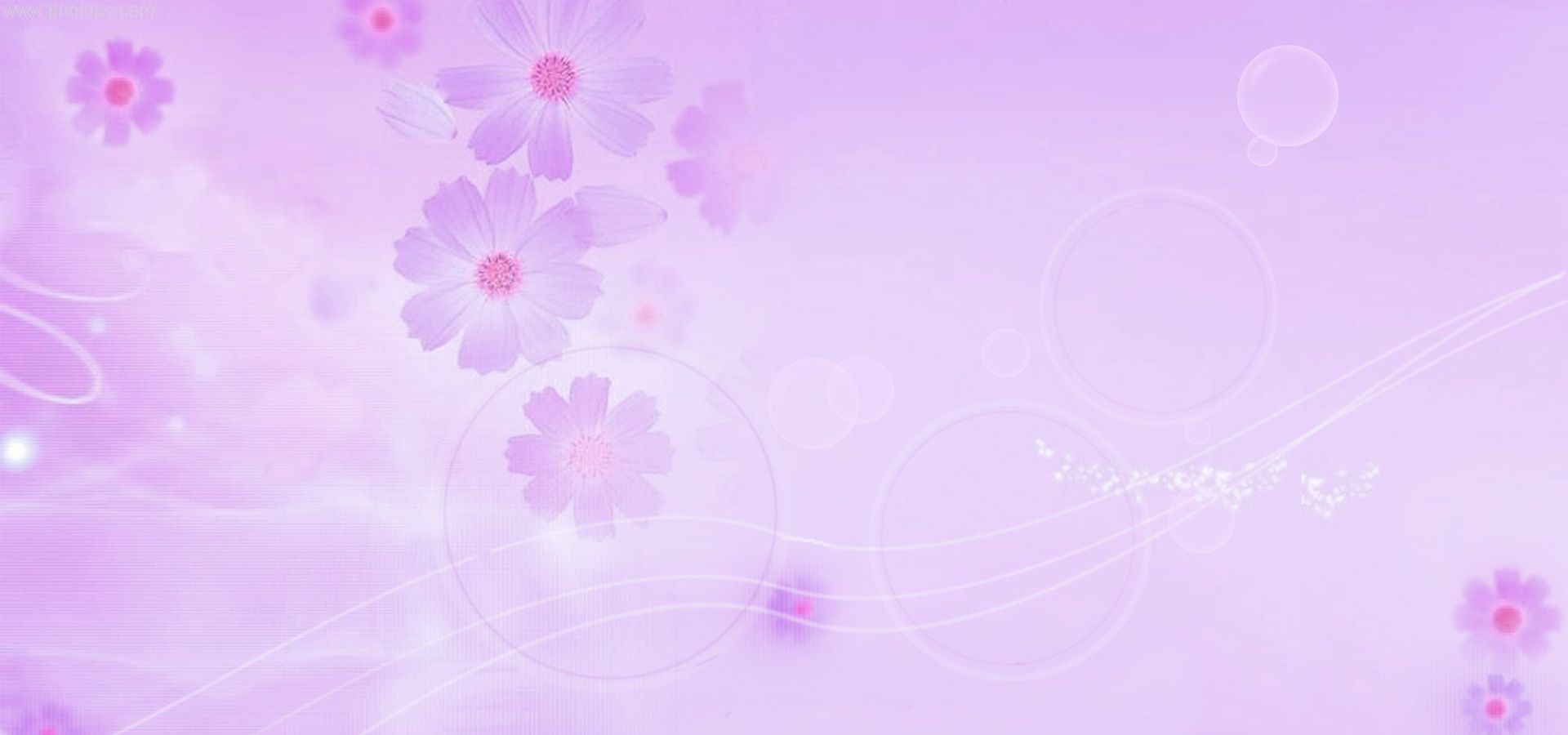 وردي زهري نمط زهرة الخلفية Purple Flower Background Flower Backgrounds Purple Flowers