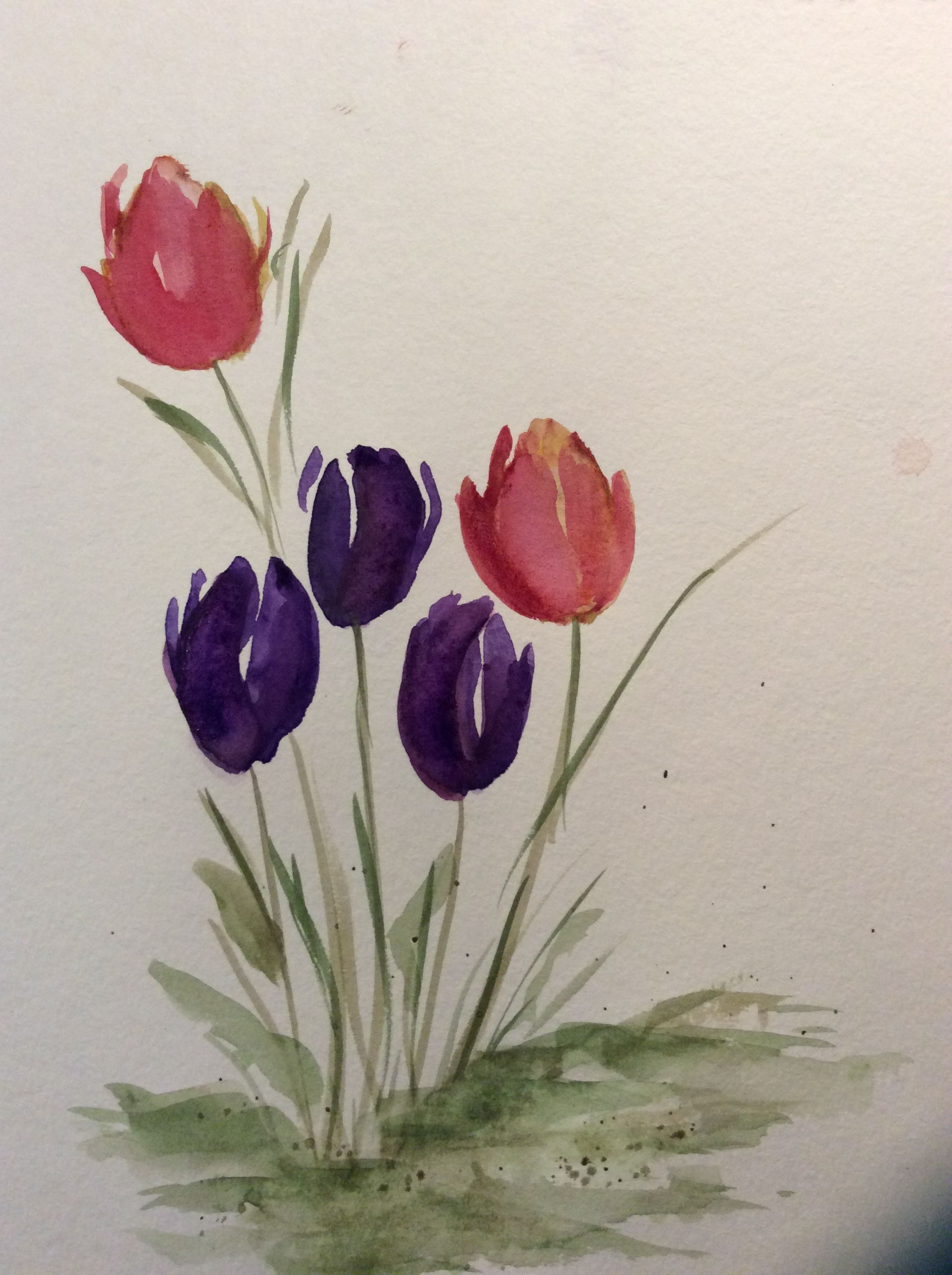 Watercolor Tulips Watercolor Tulips Loose Watercolor Flowers