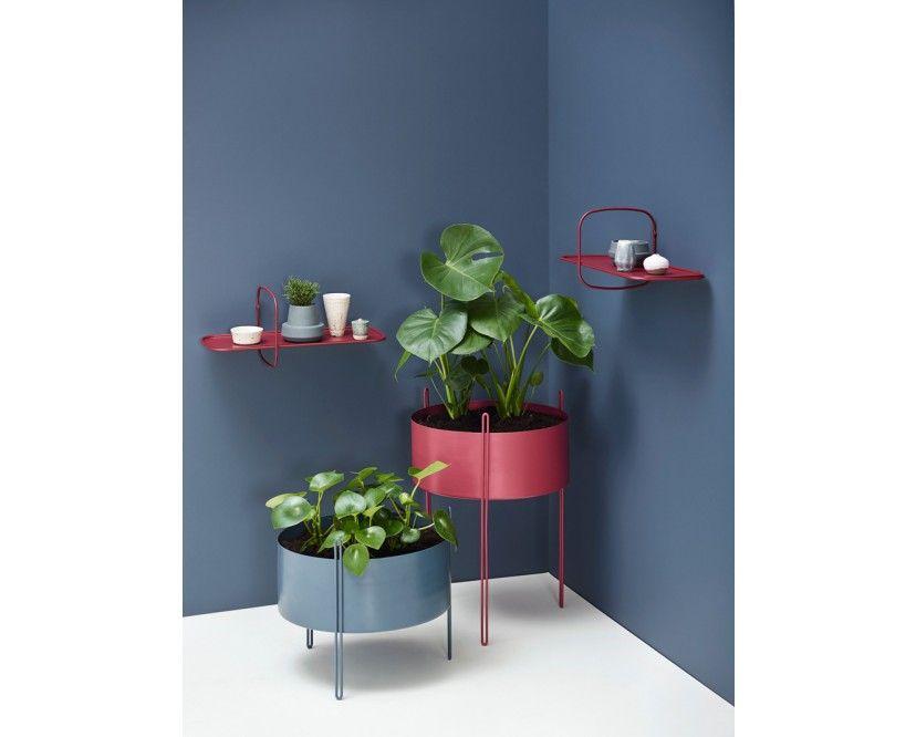 Pidestall Blumentopf - pflanzen für wohnzimmer