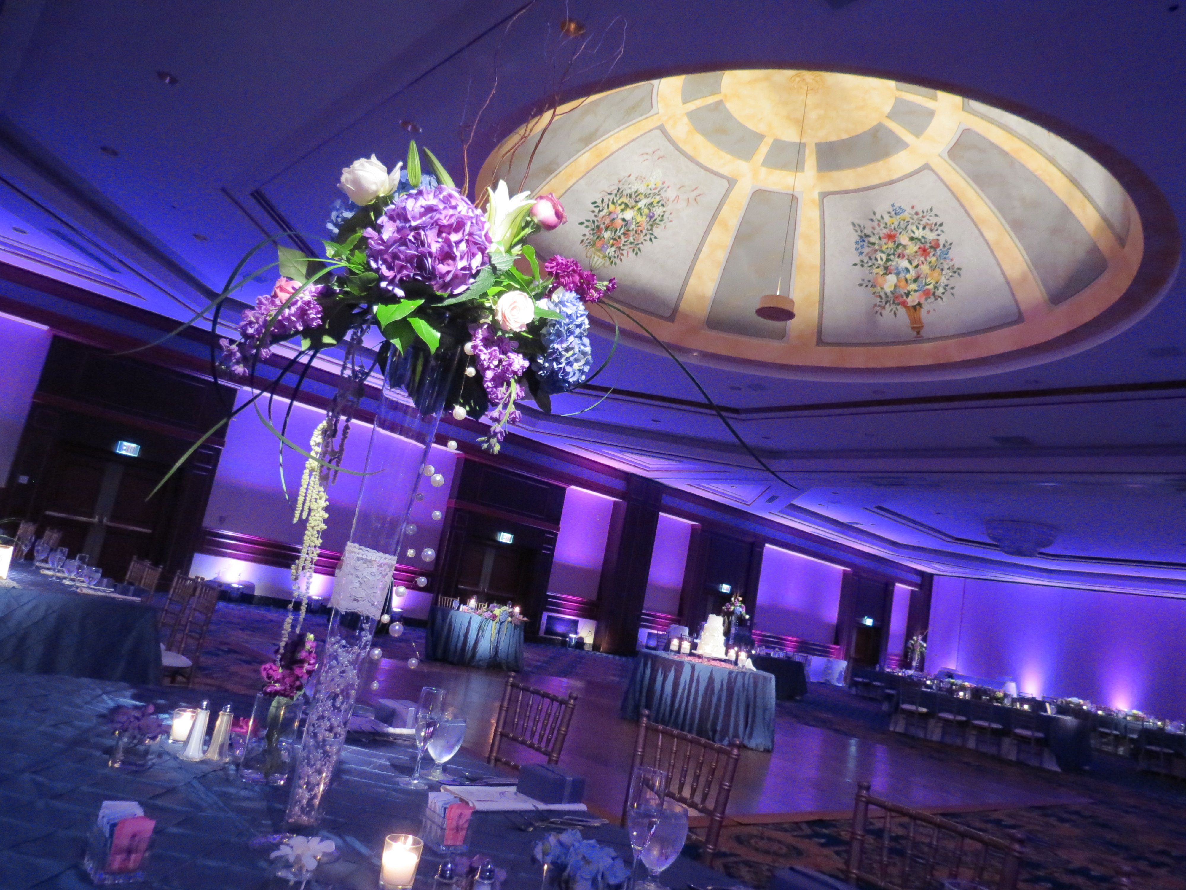 wedding and event lighting in springfield, il. crowne plaza