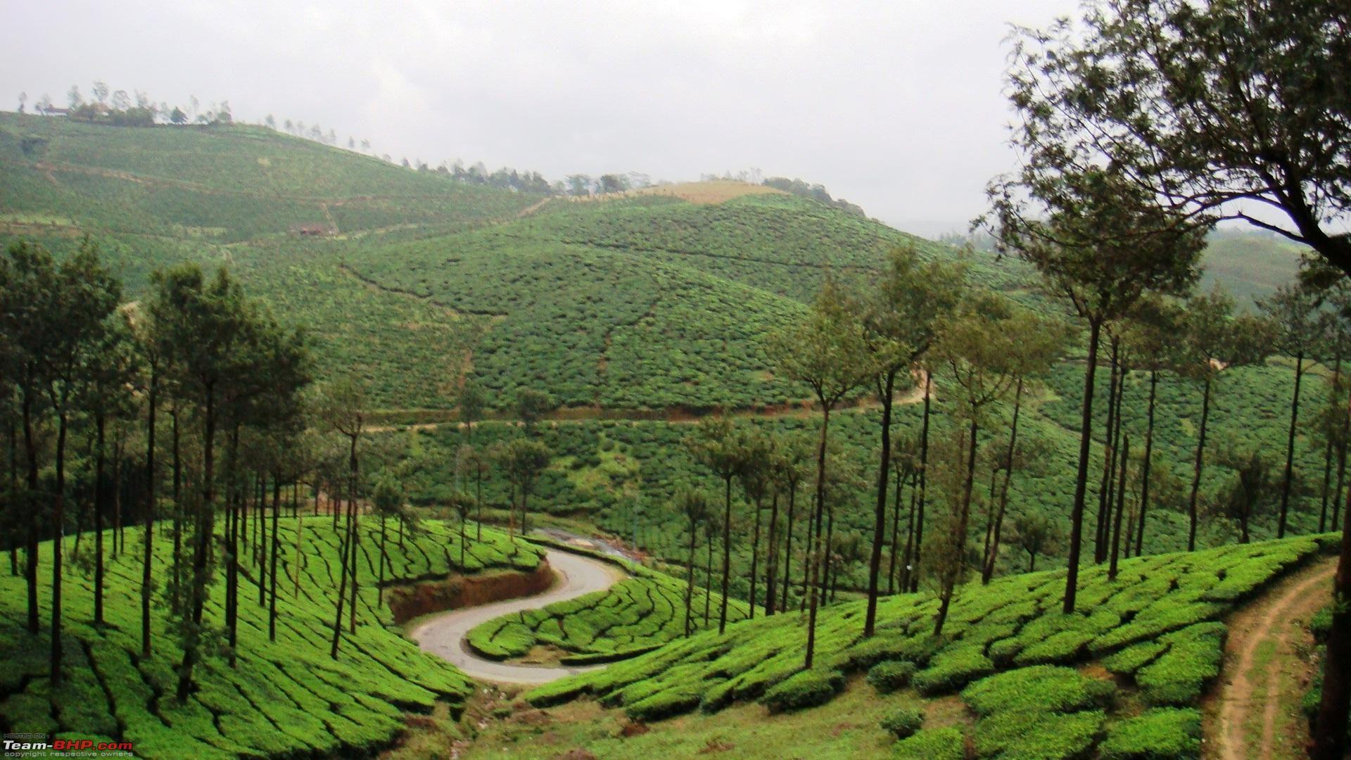 Kerala Wallpaper Nature Tourism Tour Packages Nature Desktop Wallpaper