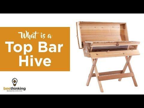 Beau Top Bar Hive