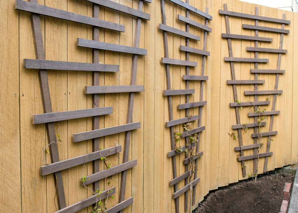 Exceptional Break Up A Boring Fence With A Modern Garden Trellis! Help Flowering Vines  Cover Up