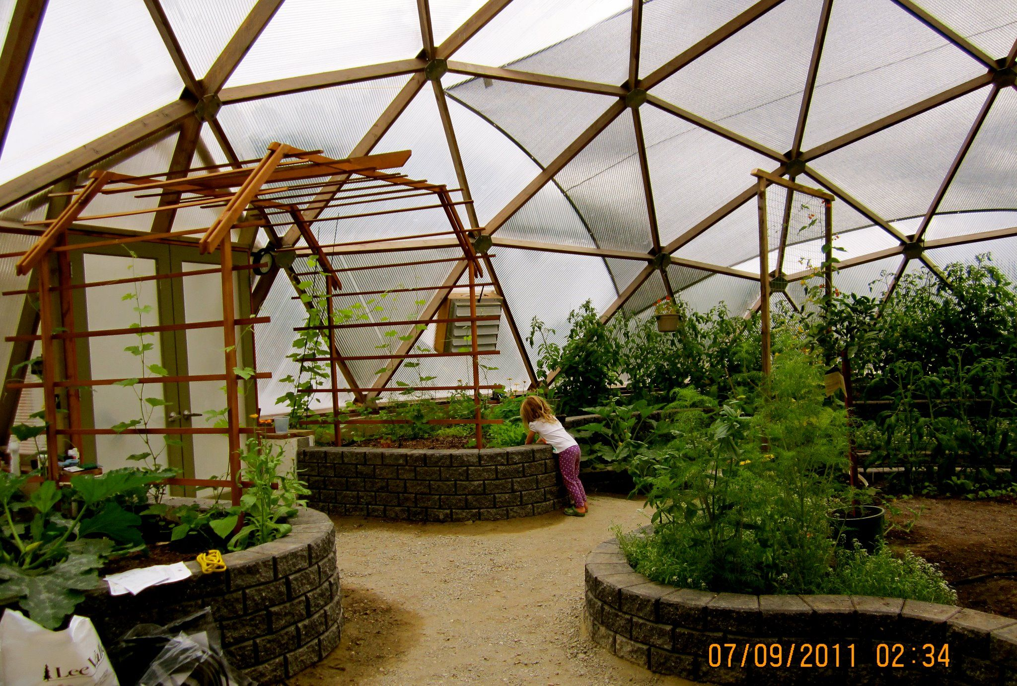 Inside of a geodesic dome green house in bc nine month for Garden greenhouse design