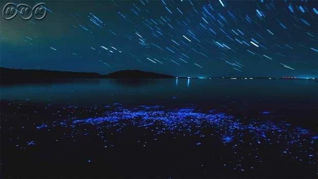 2月24日(日) ニッポン印象派「光る海」 | BS Channels | Northern lights