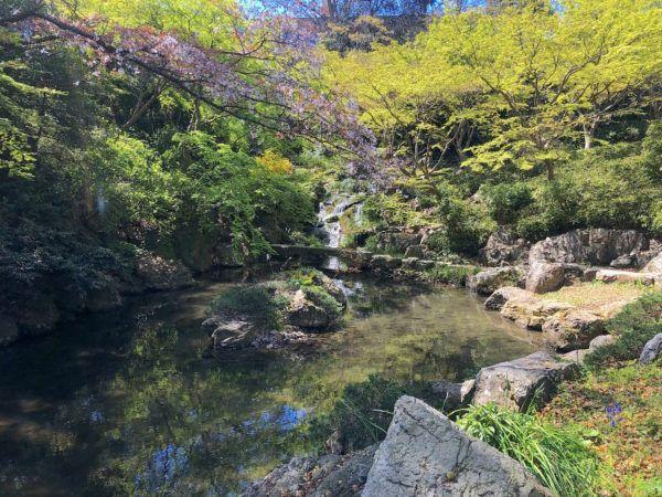 浜松城・浜松城公園について 「浜松城」(はままつじょう)は戦国時代に徳川家康が居城としていたことで知られる城郭で、続日本100名城にも選定。現在の天守閣は昭和中期に復元されたもの、公園内にある日本庭園は昭和の末に築庭されたもので、名古屋の『…