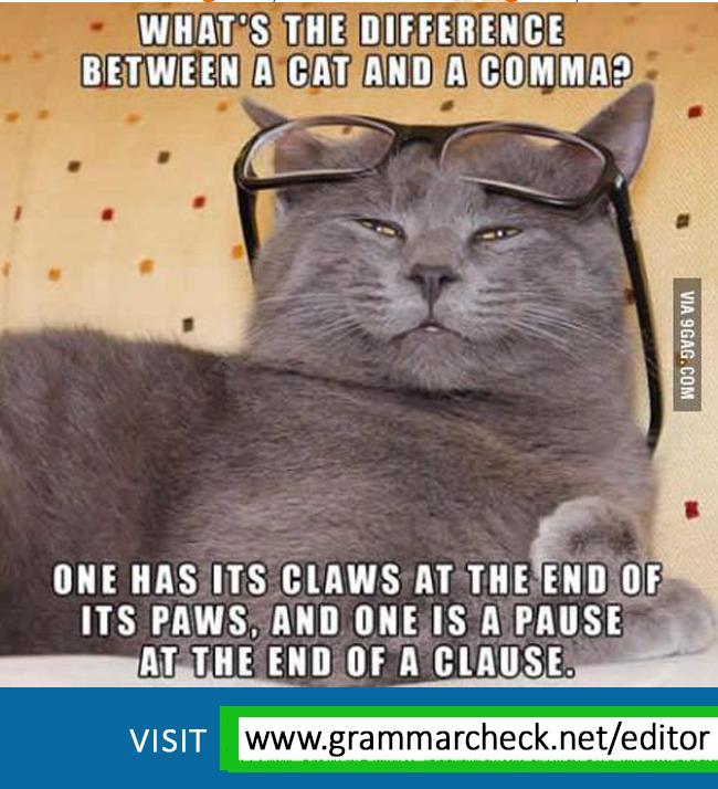 English Grammar Writing Grammar Humor Grammar Jokes Grammar Memes