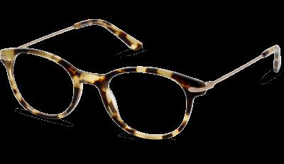 Lunettes général optique In Style ISBF11 HD TORTOIS--GOLD   lunettes ... 763a4c4f91d7