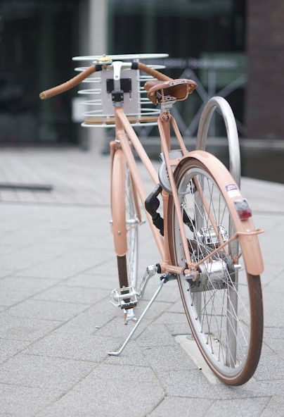 Copper With Images Pink Bike Bicycle I Want To Ride My Bicycle