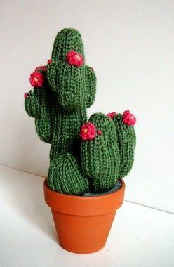 kaktusgarten.com