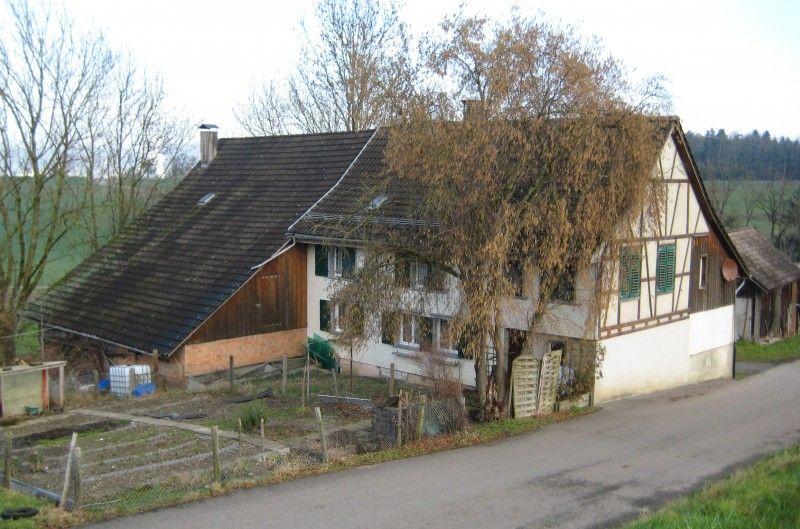 Immobilien Kaufen Haus verkaufen, Wohnhaus, Immobilien