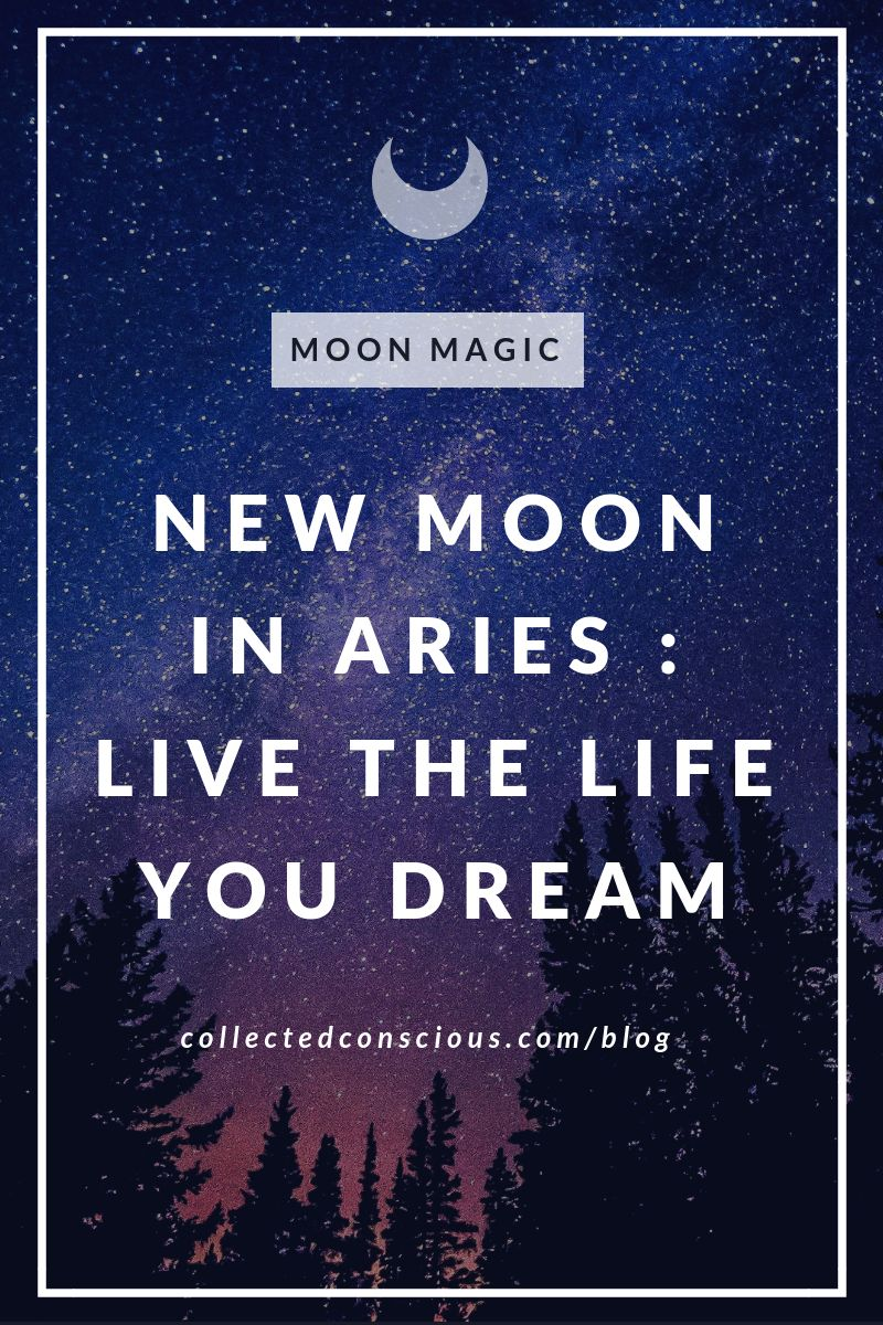 New Moon In Aries Live The Life You Dream Shop Collected