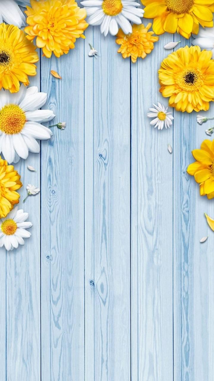 Flowers wallpaper by georgekev - d9 - Free on ZEDGE™