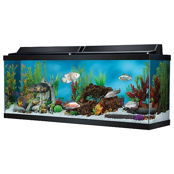 Top Fin® Hooded Aquarium Aquarium hood, Aquarium