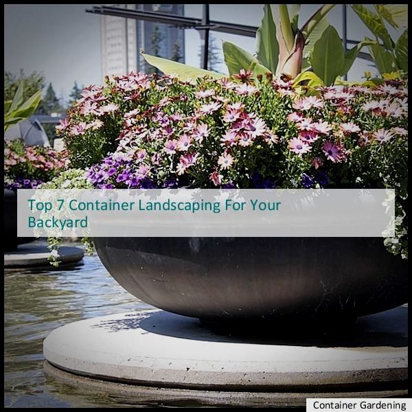 Container Gardening Plans, Container Backyard Tips, Container