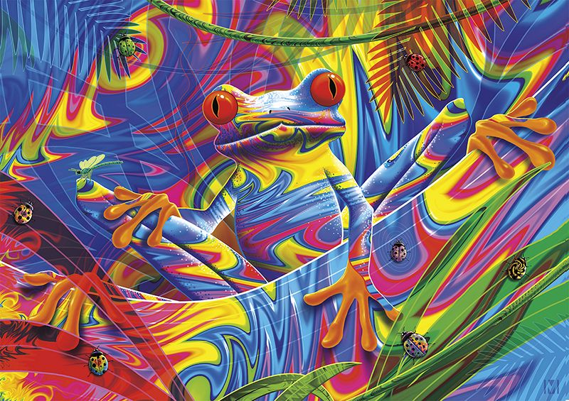 Vivid: Rainforest Frog - 300pc Large Format Jigsaw Puzzle by