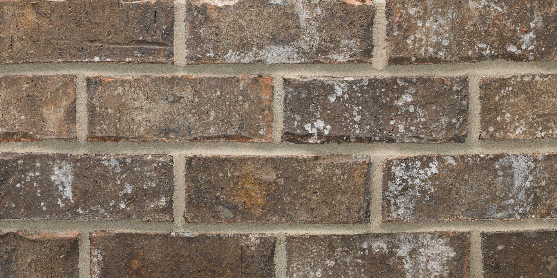 Acme Brick Rockwell Exterior Inspiration In 2019 Brick