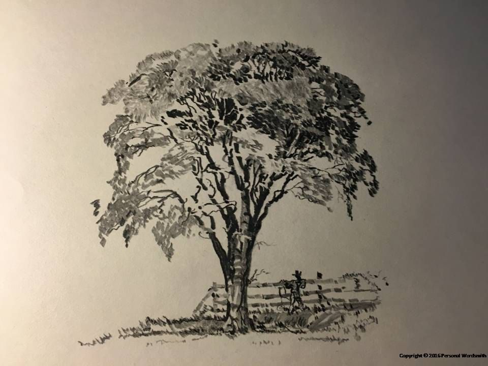 Black And White Tree Sketch Download Rustic Art Digital Print Pencil Of