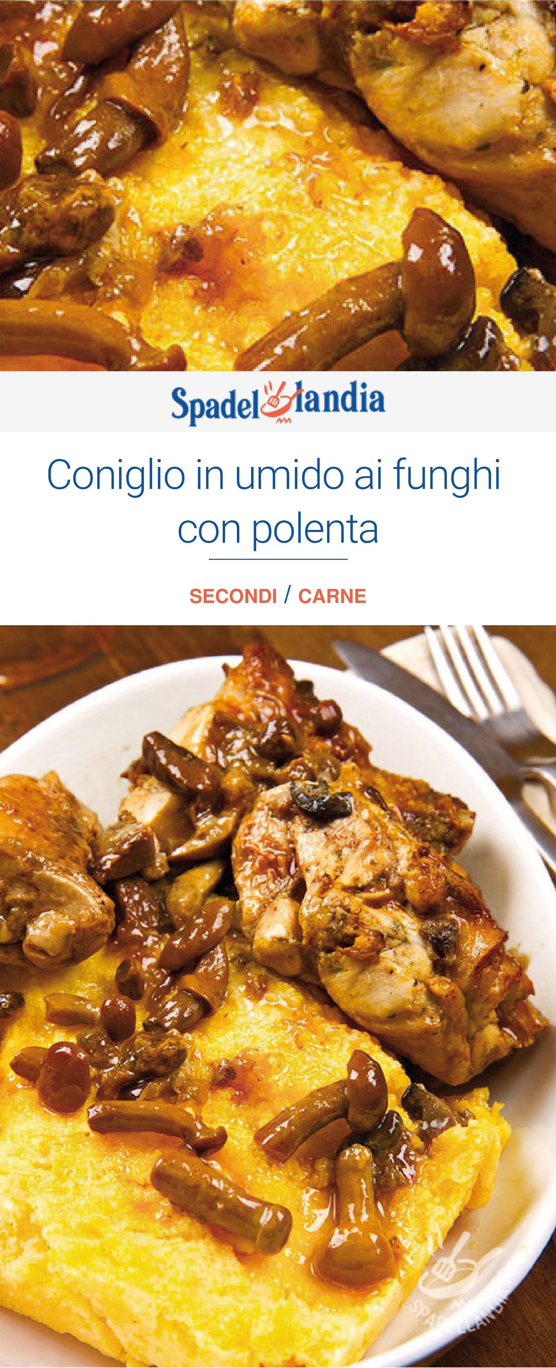 63665f9152ee221798546a88b1001b0c - Ricette Coniglio In Umido