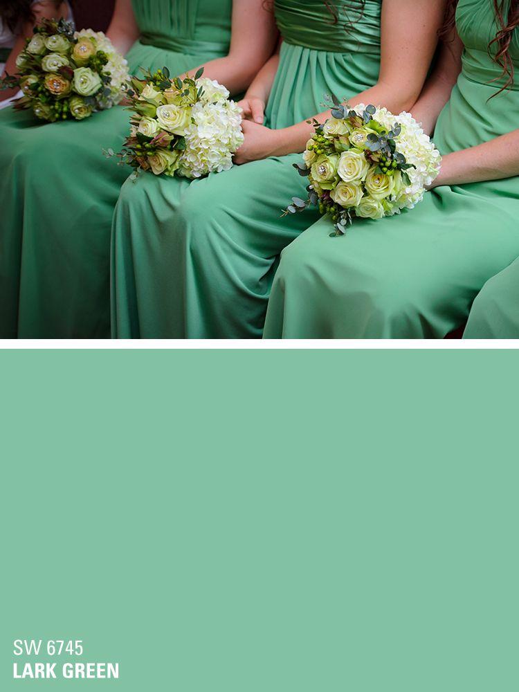 Sherwin Williams Paint Color   Lark Green (SW 6745)