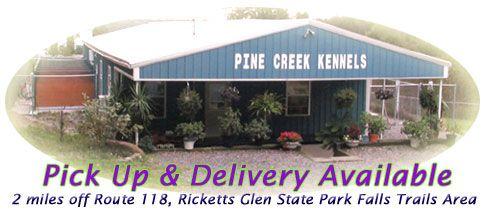 Pine Creek Pet Resort A Deluxe Boarding Kennel Located In Serene Country Side Near Ricketts Glen State Park In Northea Pet Resort Kennel Dog Boarding Kennels