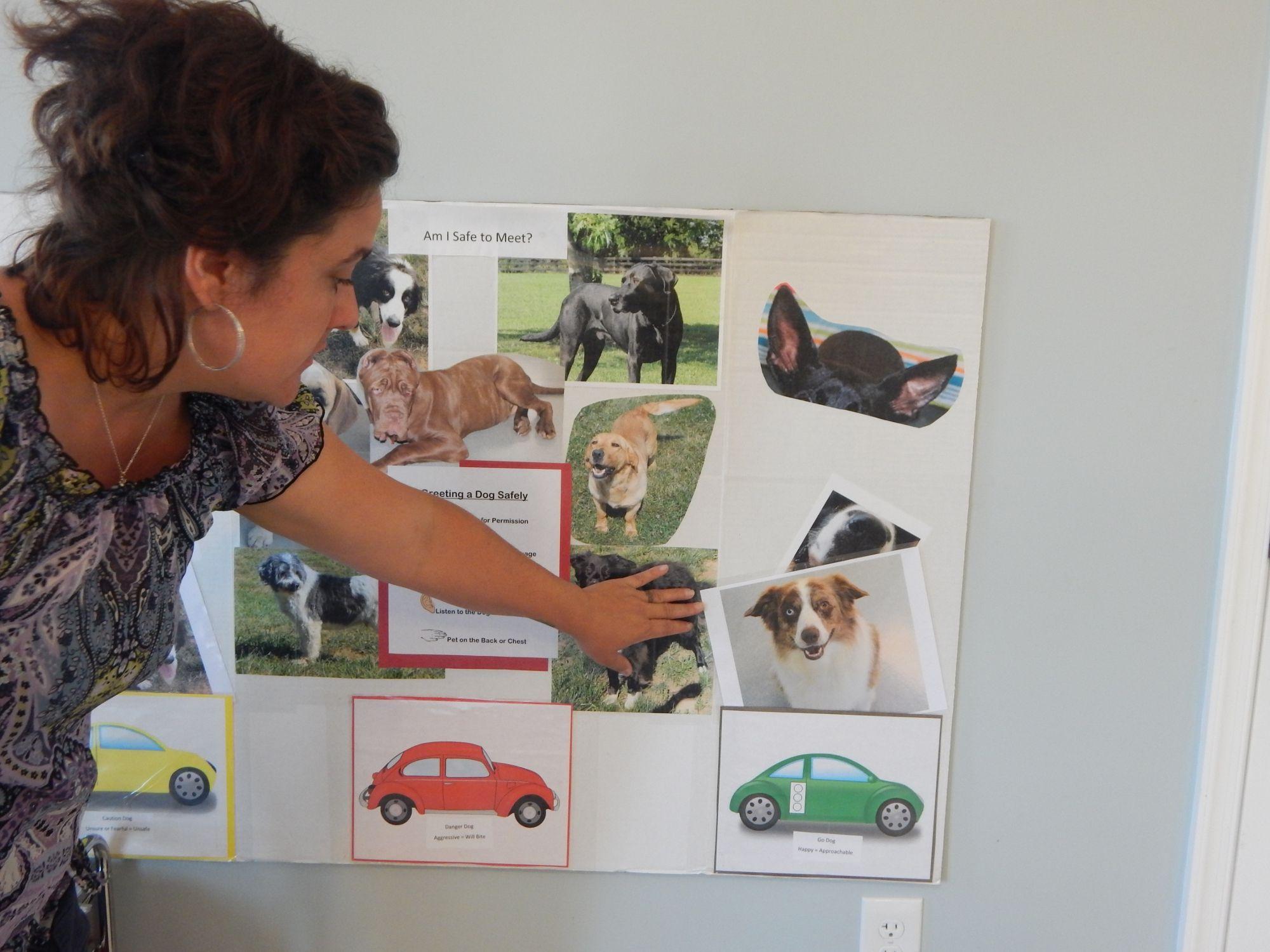 16+ Briggs animal adoption center ideas in 2021