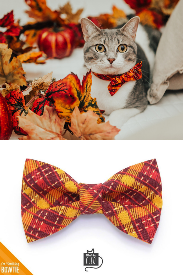 Kitten One Size Plaid Cat Bow Tie Small Dog Bowtie  Removable Vacation Red Madras Plaid Bow Tie for Cat Collar  Boy Cat  Cat