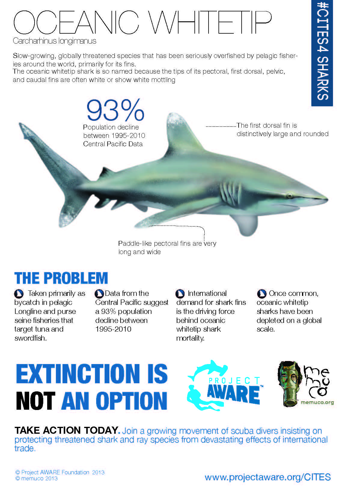 Oceanic Whitetip #Infographic designed by Memuco: Learn more about ...