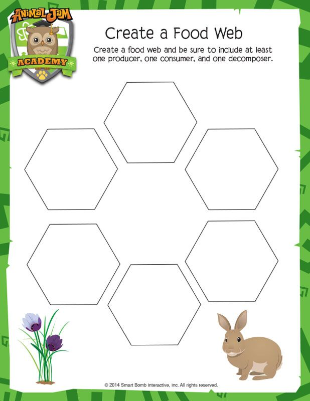 Animal Jam Academy | Science Downloads | Create a Food Web | Animal ...