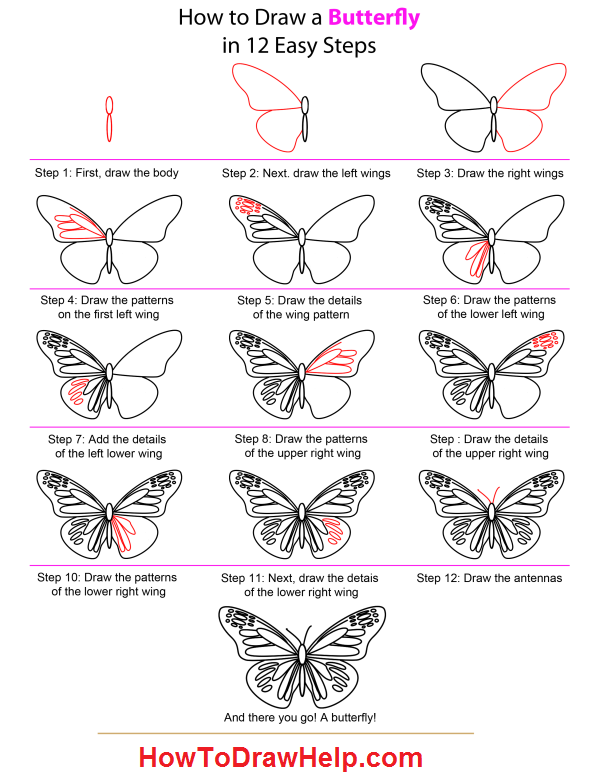 Easy to draw butterflies butterfly drawing easy methods how to draw butterflies step by design
