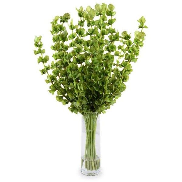 Bells Of Ireland Liked On Polyvore Faux Flower Arrangements Faux Flowers Flower Arrangements