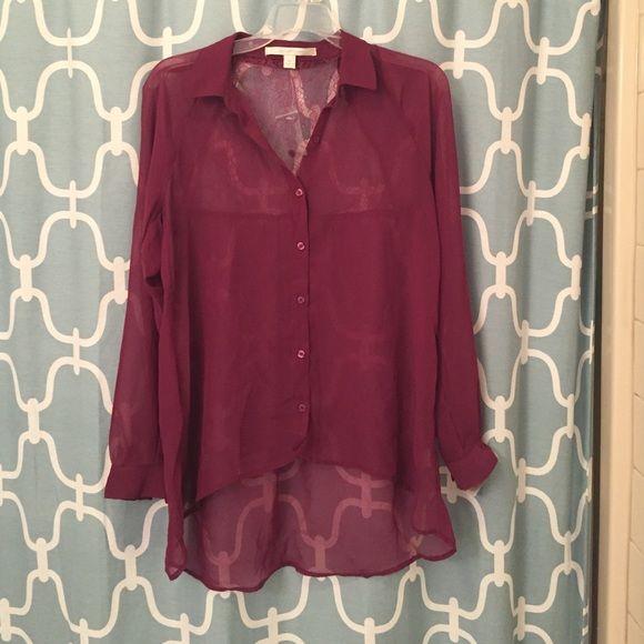 Lauren Conrad sheer button down! NWT Sheer button down with a lace back- hi-low cut! Super cute! LC Lauren Conrad Tops Button Down Shirts