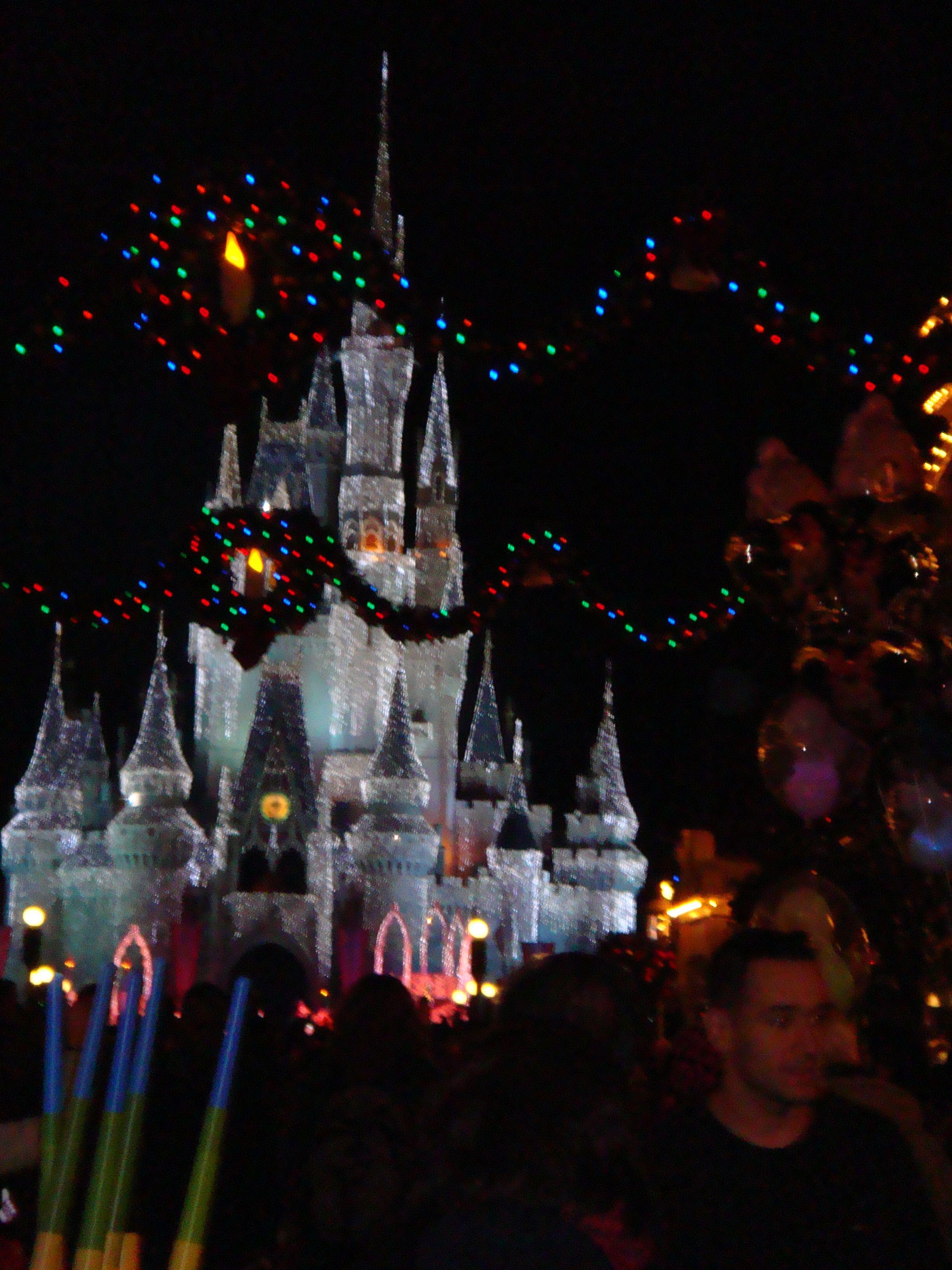 Disney at Christmas 2010