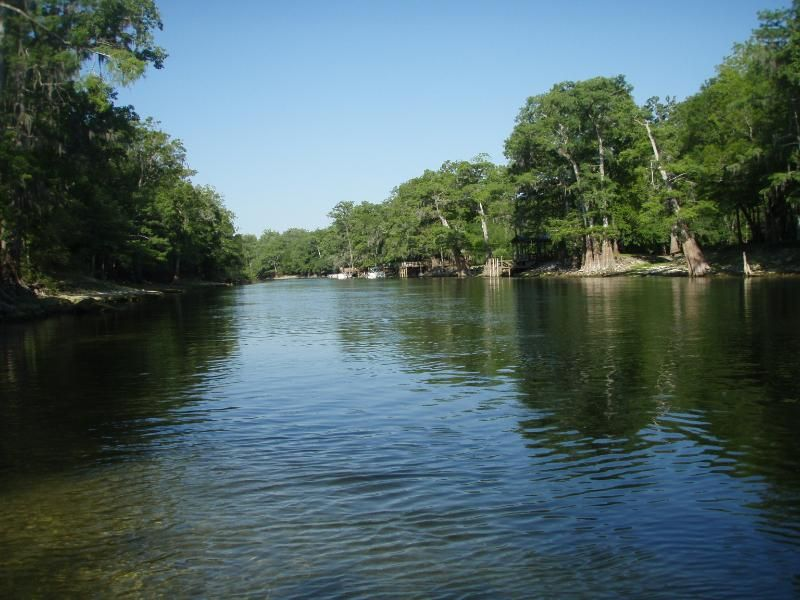 Explore the Crystal-Clear Springs of the Santa Fe River