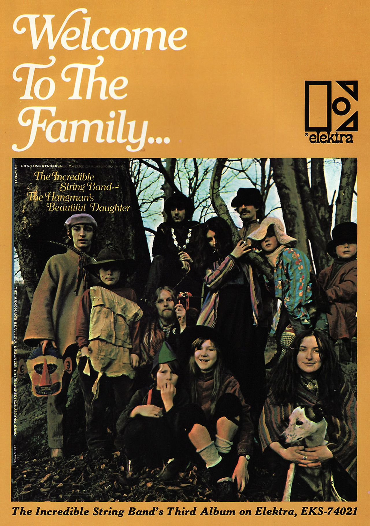 Image result for incredible string band welcome to the family