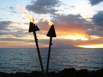 tiki torches- want with clear background
