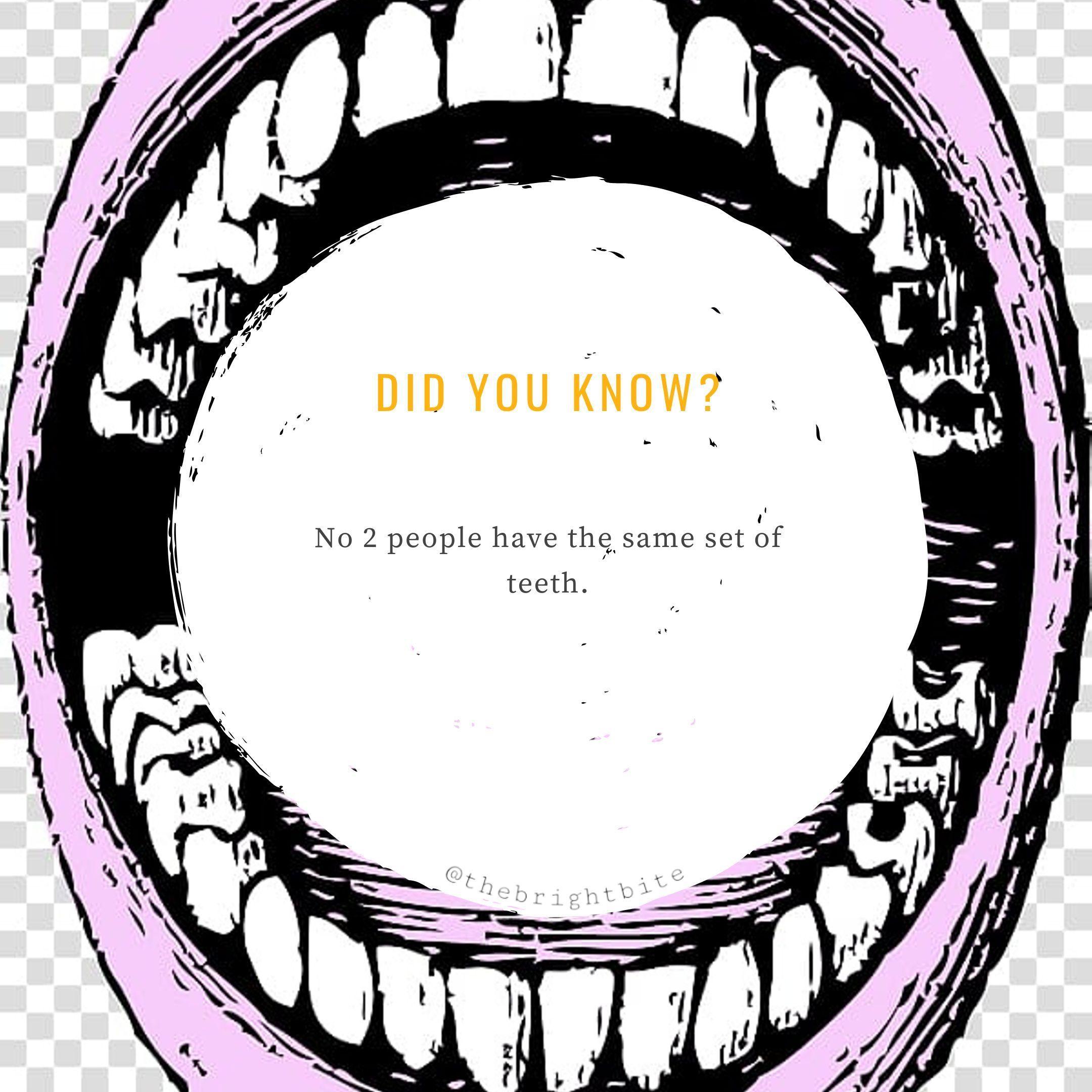Teeth Are Unique  #dentalfacts #thebrightbite #didyouknow #dentalfacts #funfacts #facts #dentalhygienist #teeth #dentaleducation #dentalfacts Teeth Are Unique  #dentalfacts #thebrightbite #didyouknow #dentalfacts #funfacts #facts #dentalhygienist #teeth #dentaleducation #dentalfacts