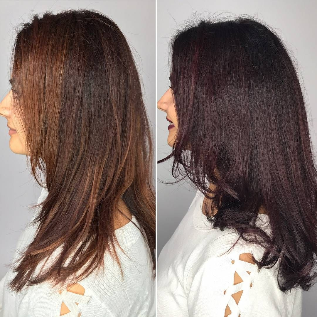 Another Gorgeous Hair Makeover For Fall Her Color Is Volterra