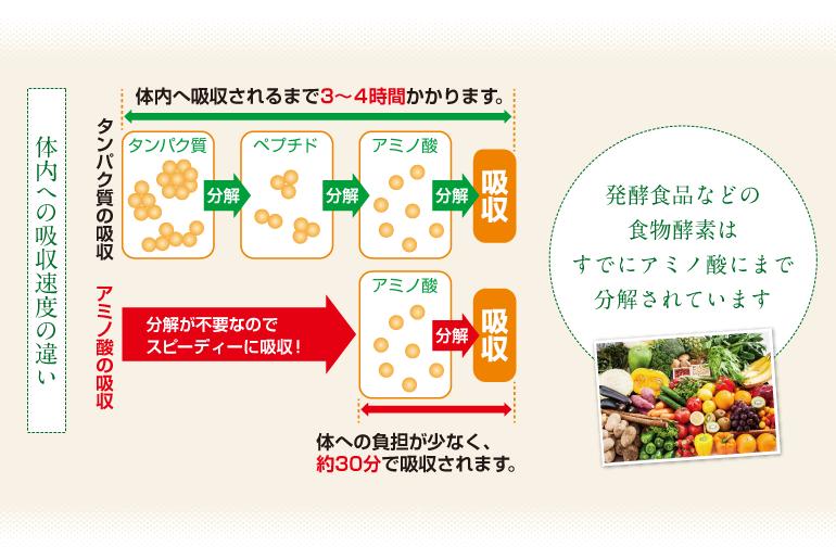 酵素とは 調和酵素のサプリメント 健康食品 の通販ならイオス