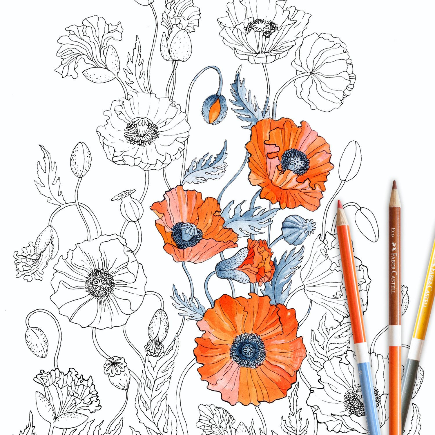 Zen colouring advanced art therapy collector edition - Poppies Coloring Page Instant Download Adult Coloring Page Coloring Book Botanical Floral Flower Poppy Art For