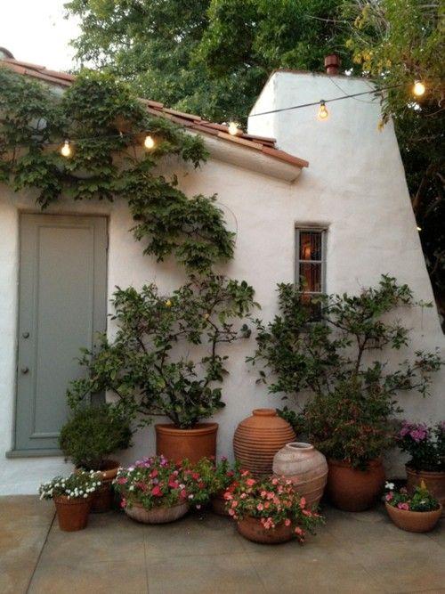 paredes blancas, tinajas y macetas de cerámica, flores y plantas