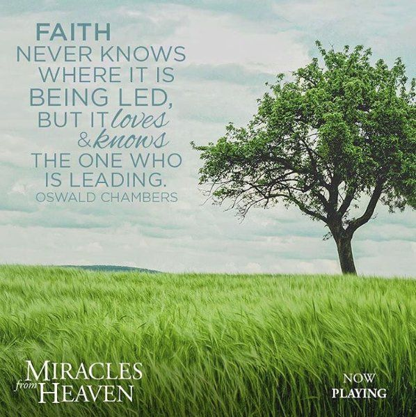 Quotes From Miracles From Heaven Google Search Wise Words