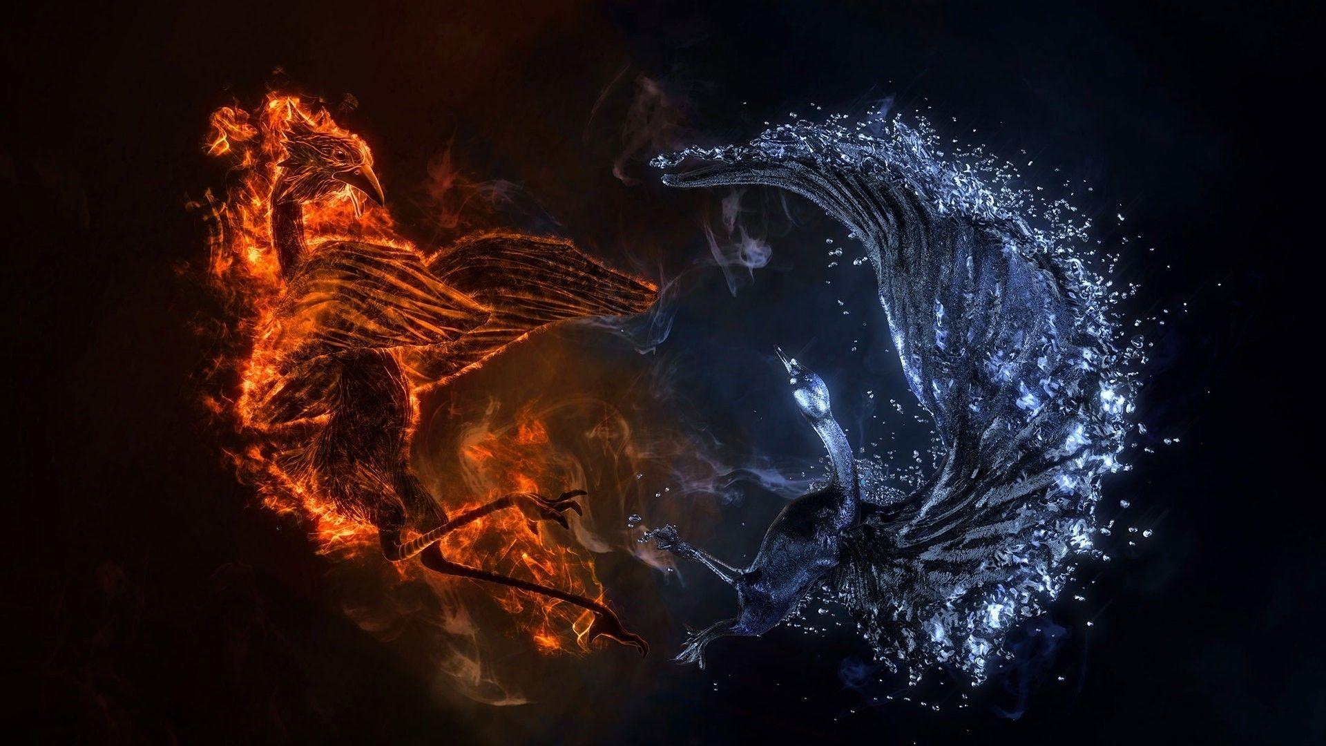pin von karo auf yin yang ☯ | fire art, fire und fire, ice
