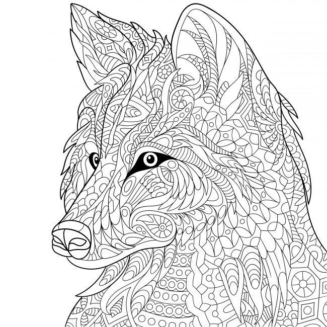 15 Dibujos Para Colorear Que Te Ayudaran A Combatir El Estres Paginas Para Colorear De Animales Dibujos Para Colorear Adultos Libros Para Colorear Adultos