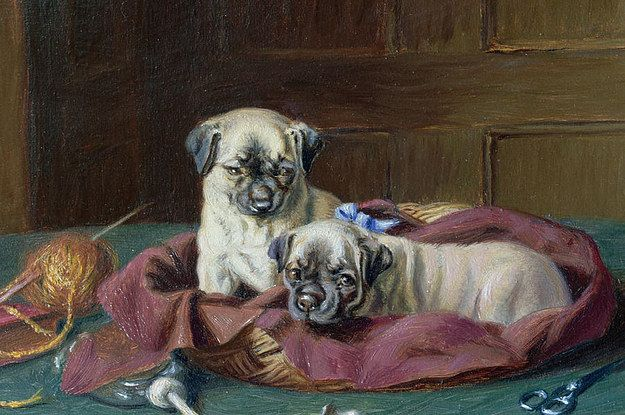This Protective Guard Pug Pug Puppies Pugs Dog Paintings