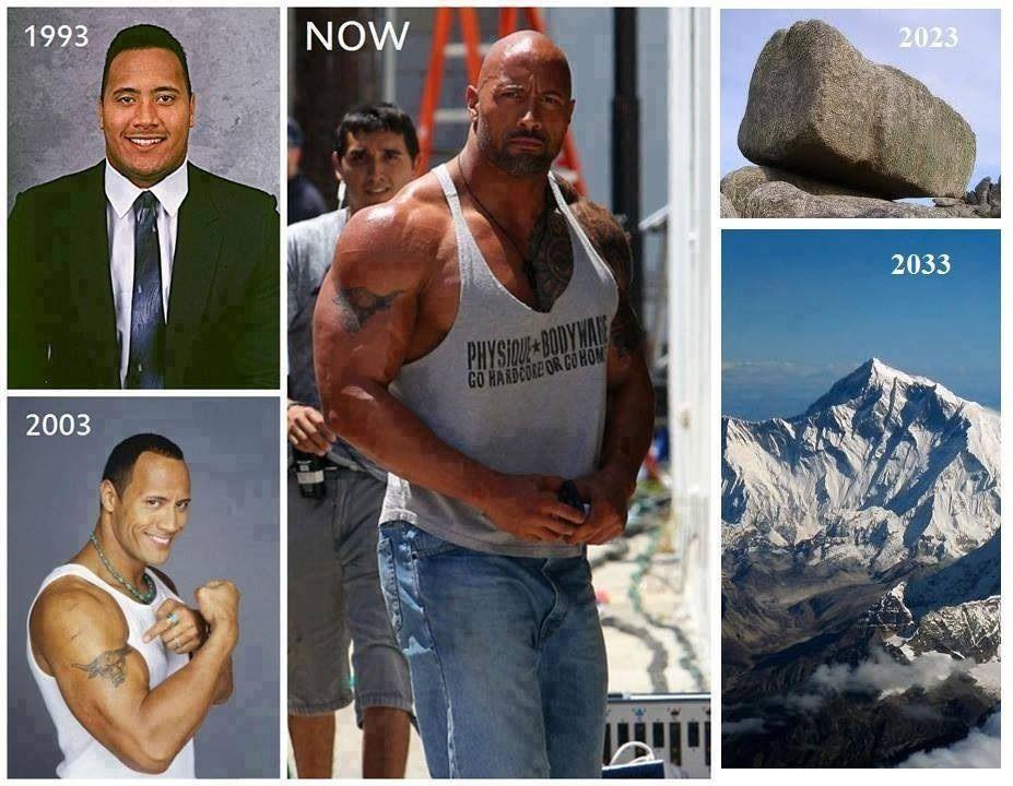 The Progression Of The Rock Dwayne Johnson The Rock Dwayne Johnson Dwayne The Rock Dwayne Johnson