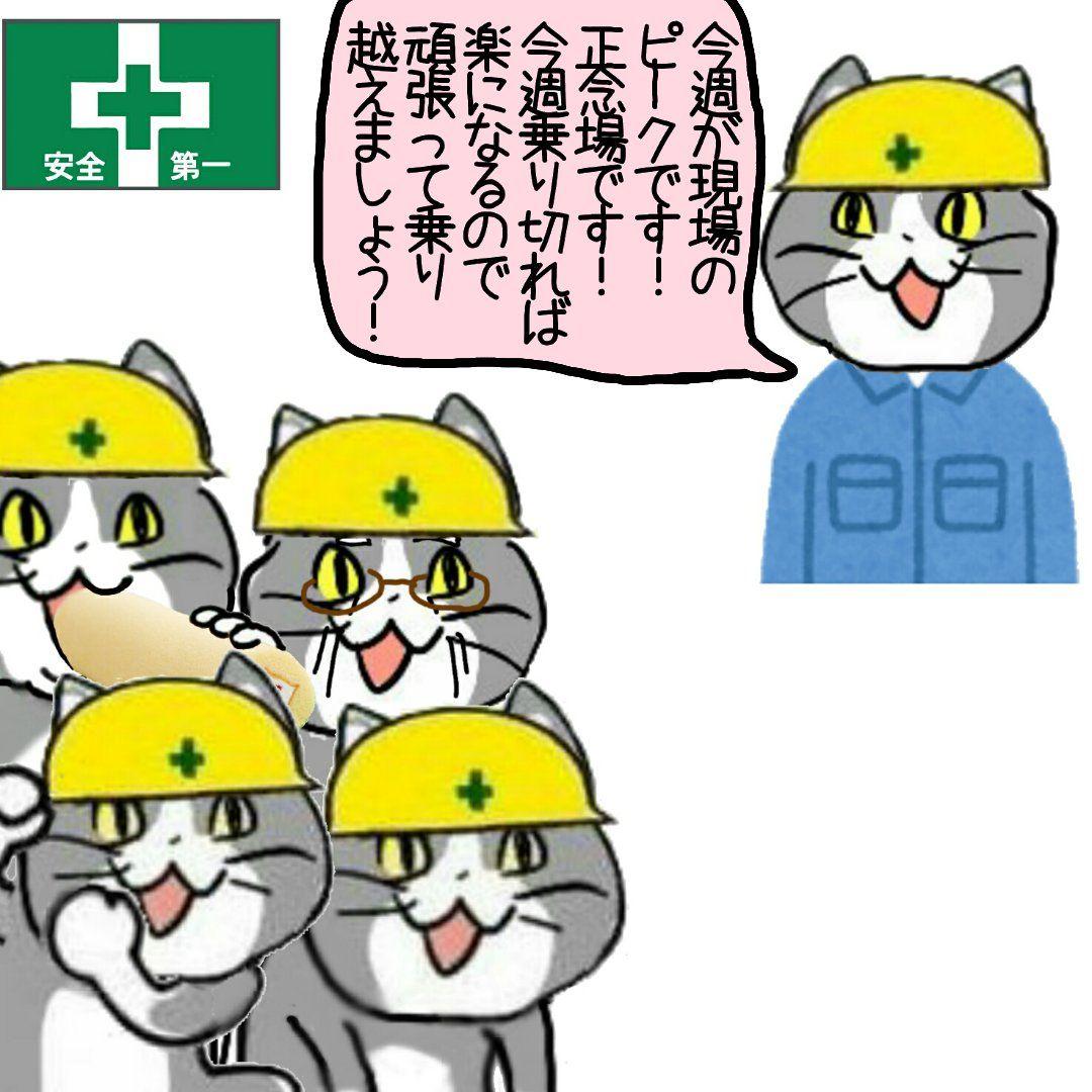 現場 猫 画像 【画像】 「現場猫」を使う工事現場が発見される