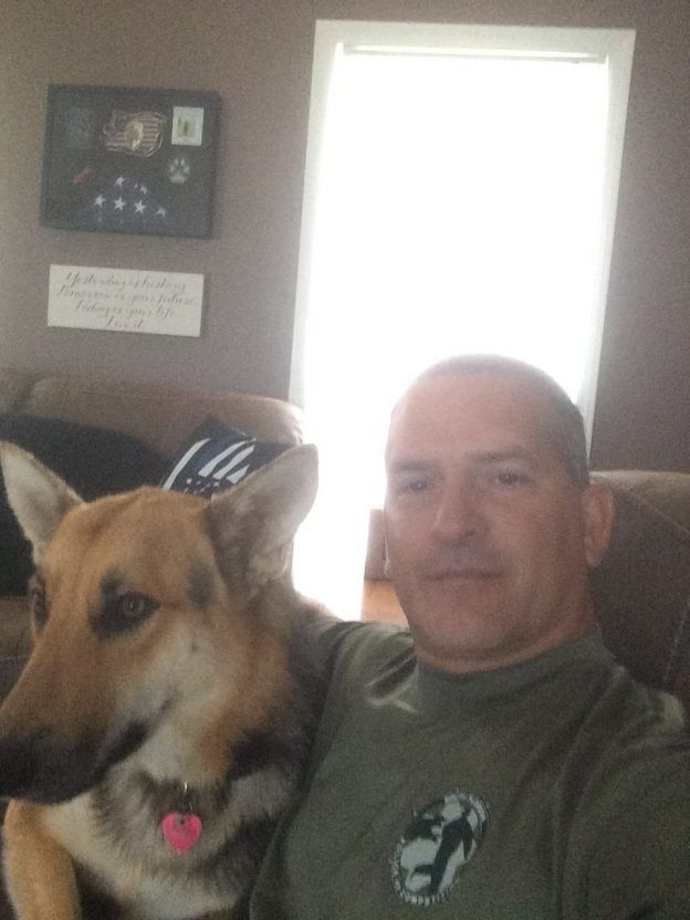 Cop Honors His K9 Partner By Fostering A Shelter Dog Dogs With Jobs Shelter Dogs Dogs